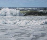 - Die-wilde-Nordsee-1