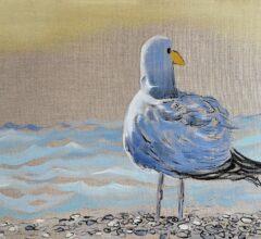 Nomandy seagull wmueller2021