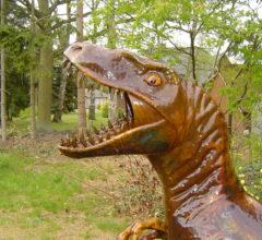 Raptor Portrait