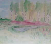 - 20160904 Mitten im Renzel Moor