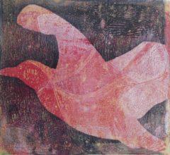 Anne-Beecken-Rote-Moewe-von-rechts
