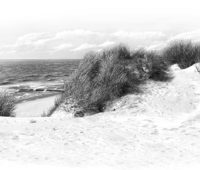 - Duene Am Roten Kliff