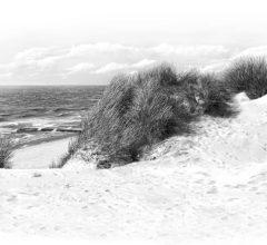 Duene Am Roten Kliff