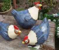 - Blaue Hühner