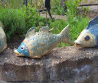 - Fische