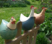 - Zaunhühner