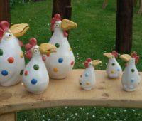 - Punktehühner